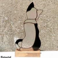 chat noir et incolore irisé