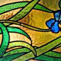 vitrail iris bleu allongé