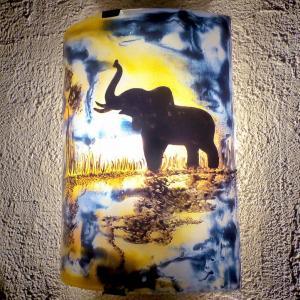 Am vr reflet eleph j b